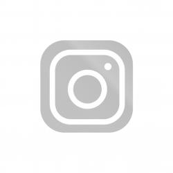 logo instagram grey