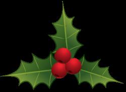 mistletoe clipart simple