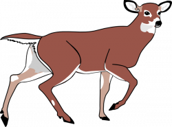 deer clip art animated