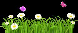 garden clipart grass