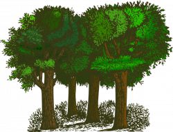 forest clipart animated