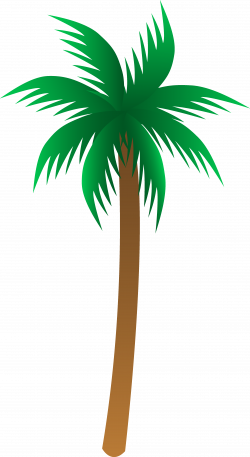 palm tree clipart tropical