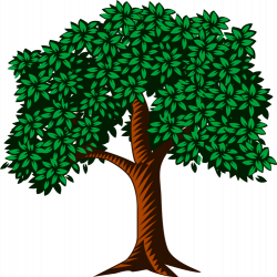 Nature clipart forest