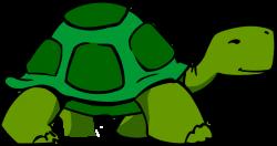 turtle clipart slow