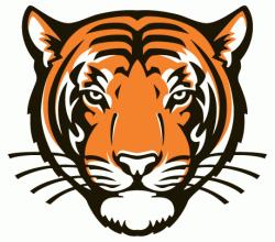 princeton logo tiger