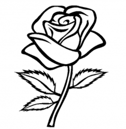 roses clipart outline