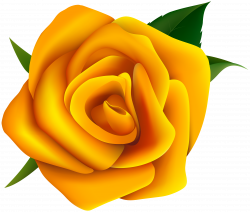 roses clipart yellow