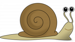 snail clipart spring