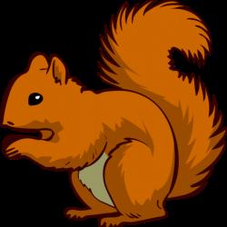 squirrel clipart public domain