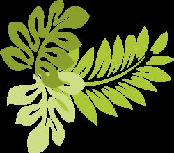 leaf clipart tropical