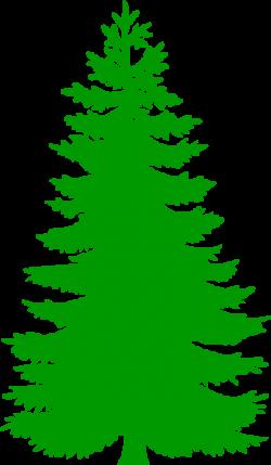 pine tree clip art single