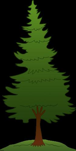 pine tree clip art high res