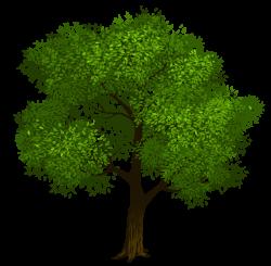 Tree clipart oak