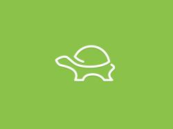 turtle logo modern