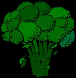 vegetables clipart broccoli