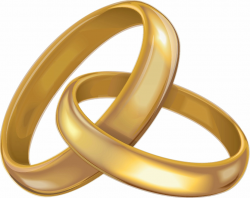 wedding rings clipart gold
